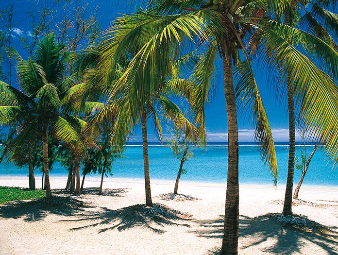 rencontre reunion site des rencontres tropicales
